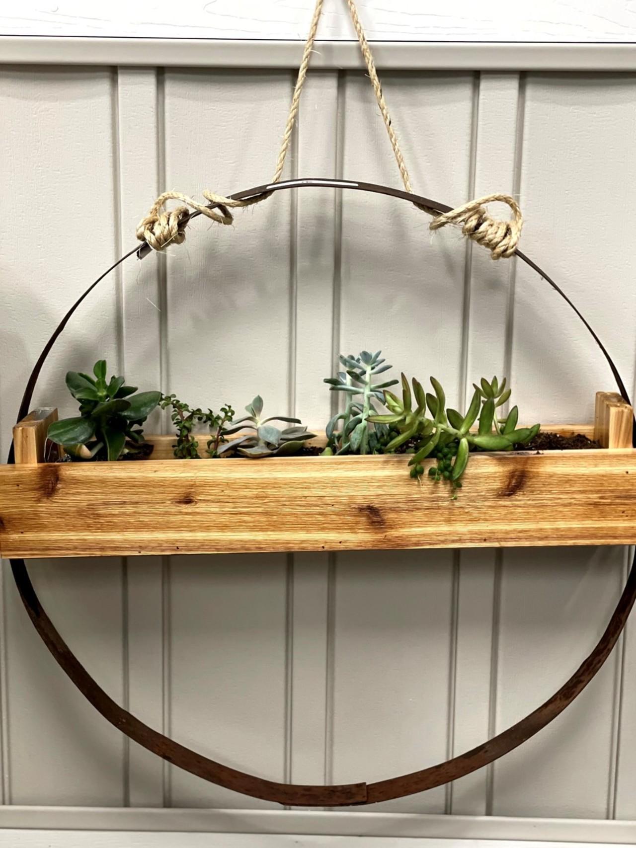 Item G - Living Art Succulent Display #1