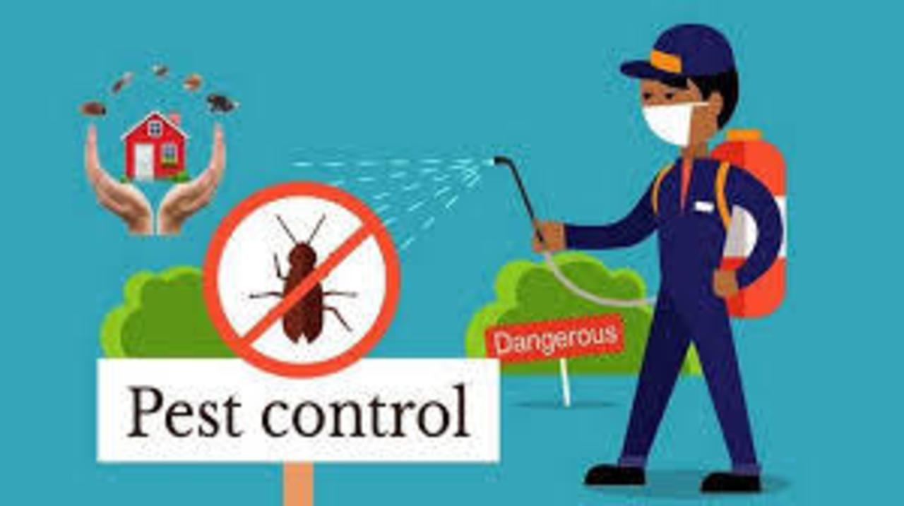 Pest Control Package 1