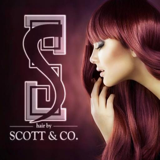 Haircut and Style at Hair by Scott & Co.