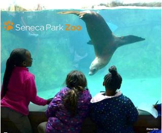 SENECA PARK ZOO FAMILY MEMBERSHIP