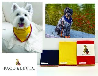 Three Paco & Lucia Pet Bandanas
