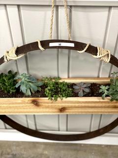 Item H - Living Art Succulent Display #2