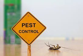 Pest Control Package 4