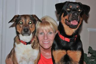 Five 1 Hour Private Dog Training Sessions with a Certified Professional Dog Trainer