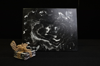 Black and White Coaster set with Canvas