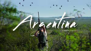 Argentina Dove Hunt for Two