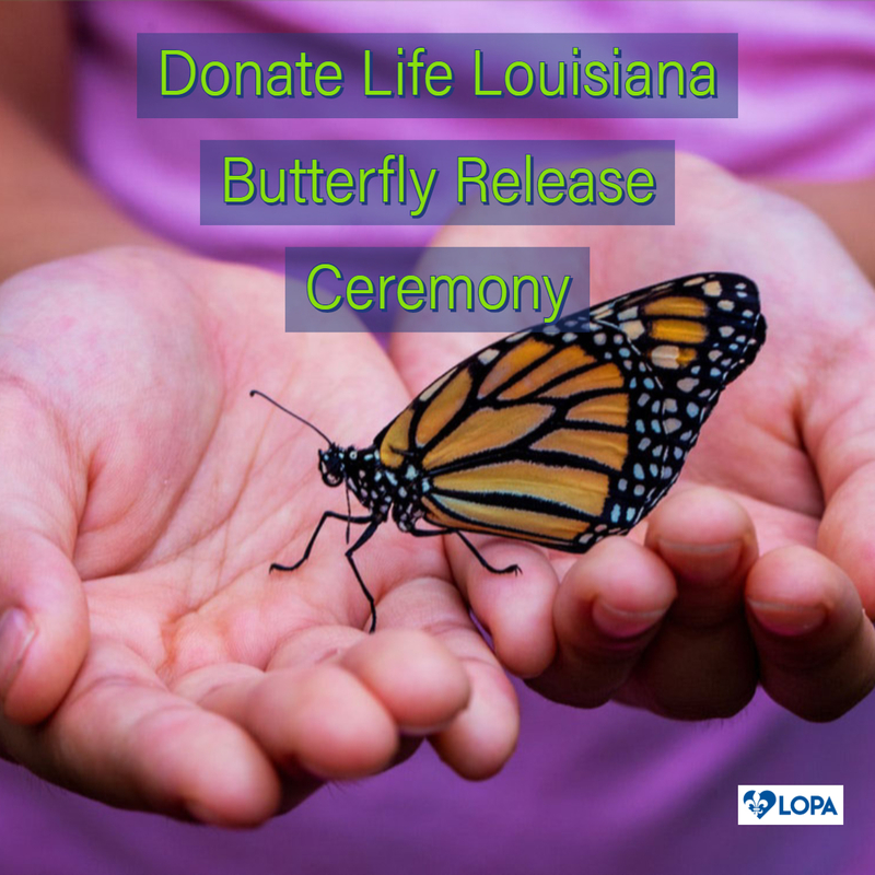 Butterfly Release & Donor Drive - St. Tammany Hospital