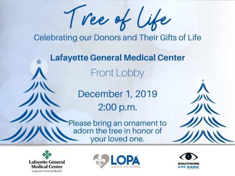 Tree of Life - Lafayette