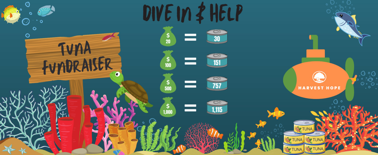 Dive In & Help Our Neighbors in Need