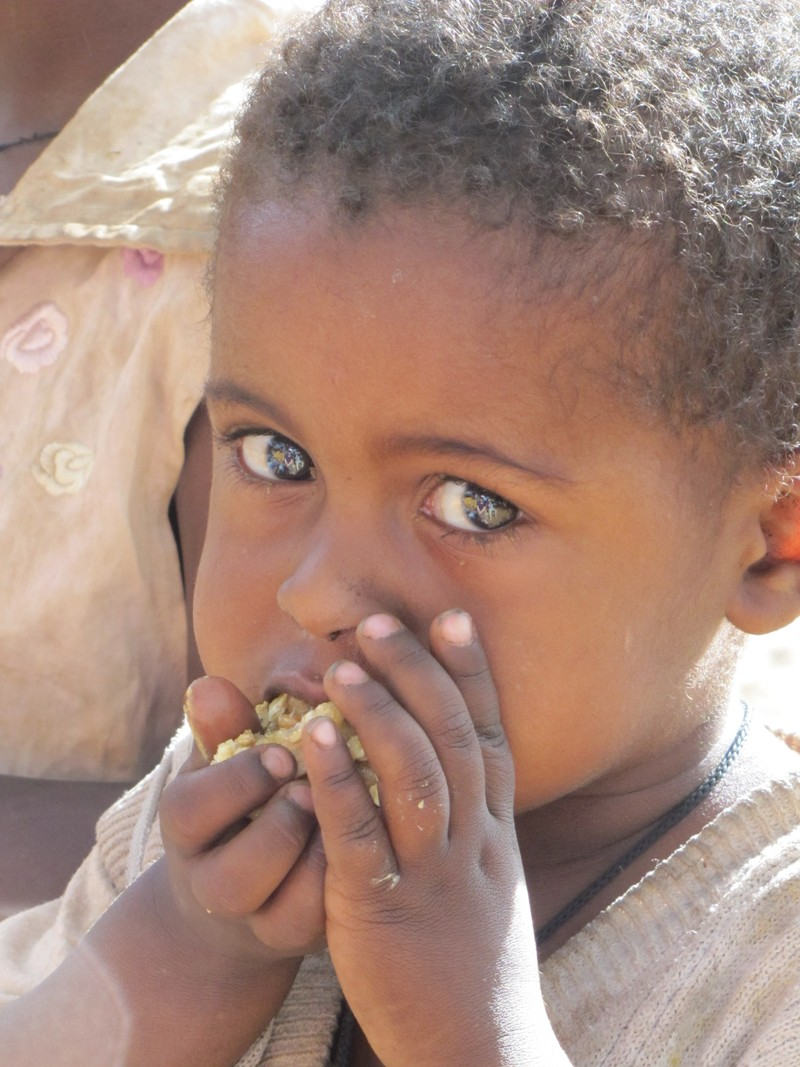 Help Tackle the Challenge of Good Nutrition