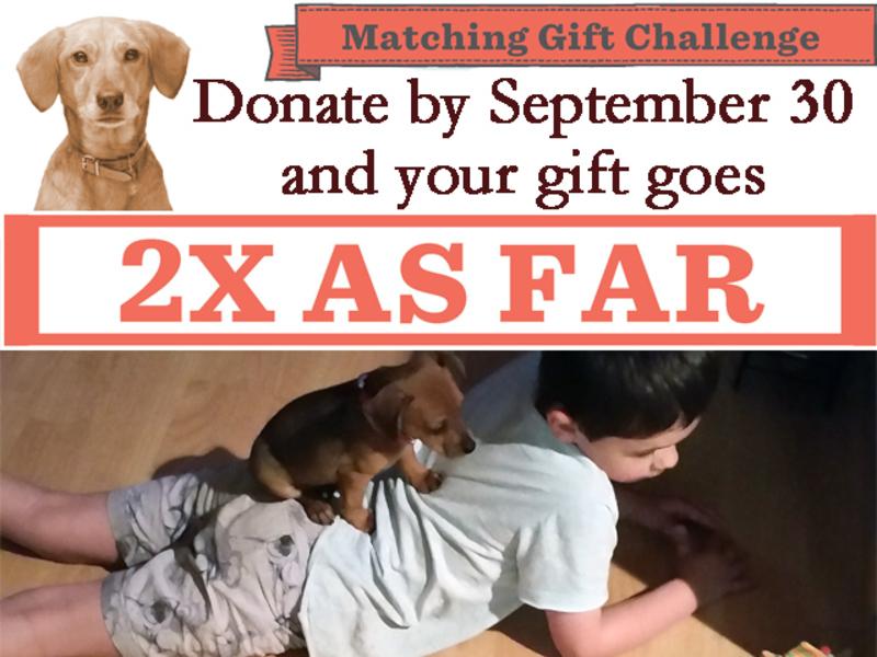 2017 Matching Gift Challenge