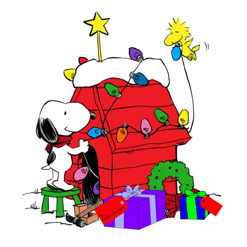 Snoopy Christmas Doghouse Galleryhipcom The Hippest