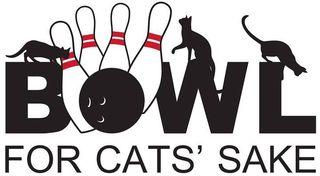 Bowl for Cats Sake