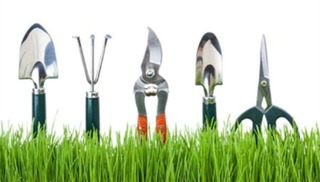 ReNEW Gardening and Landscaping Tips Educational Class