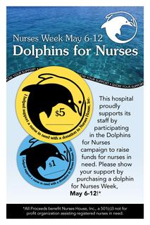 Dolphins for Nurses