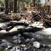 Restore River Glen