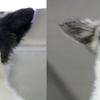 Help Us, Help Them: Riceton Dog Seizure