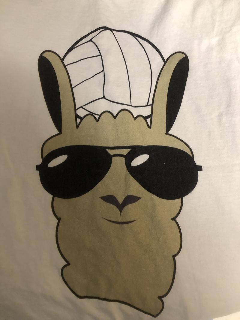 Volley Llamas