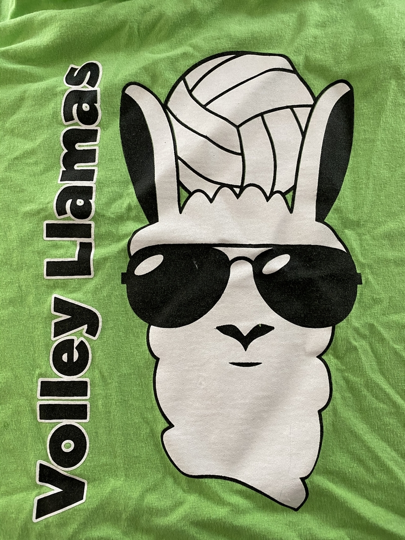 Volley Llama