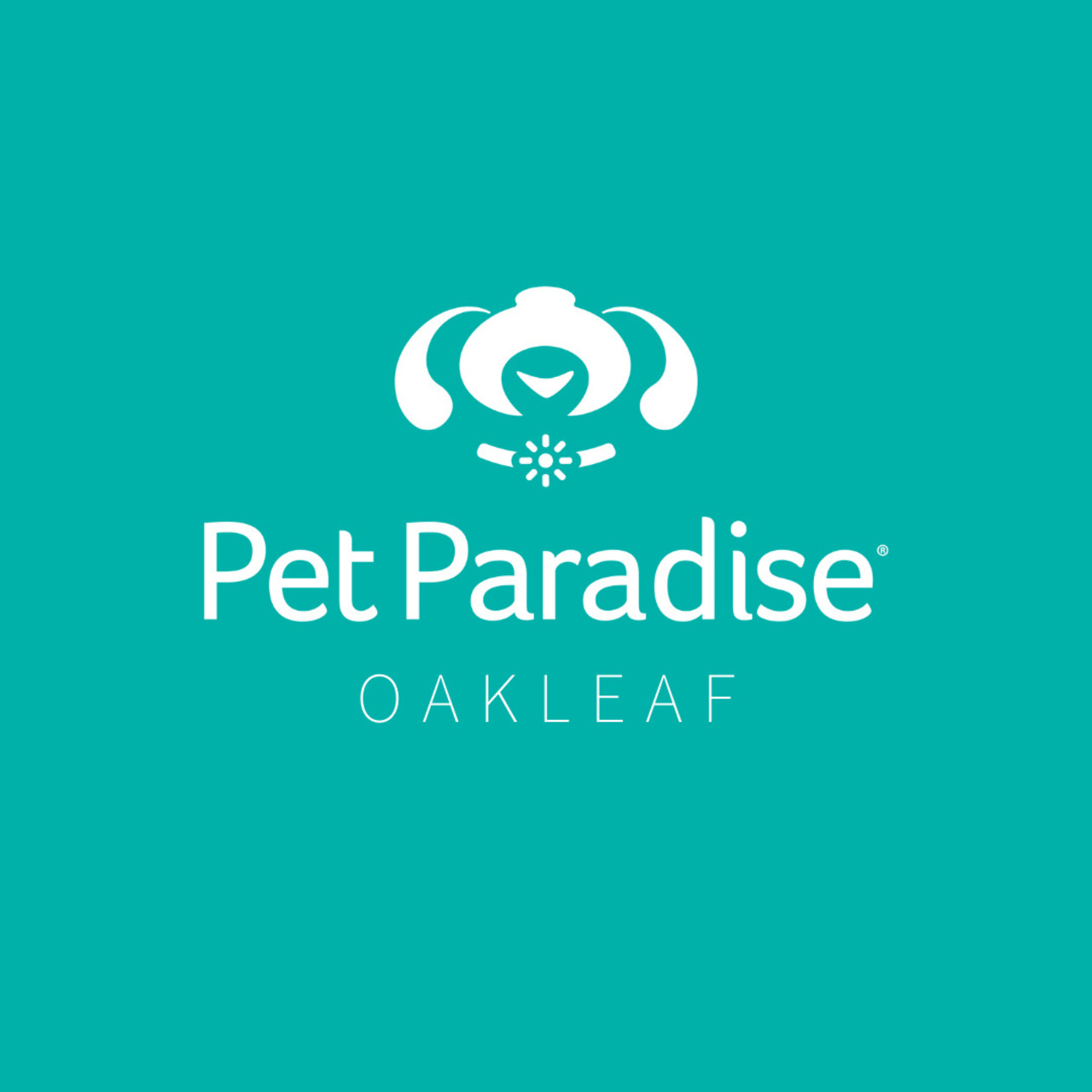Pet Paradise Oakleaf