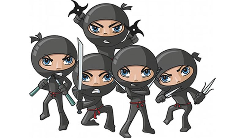 The Forecast Ninjas