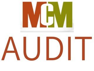 MCM Audit