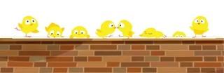 Chicks with Bricks