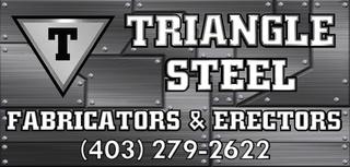Triangle Steelers