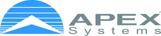 Apex Systems DSM
