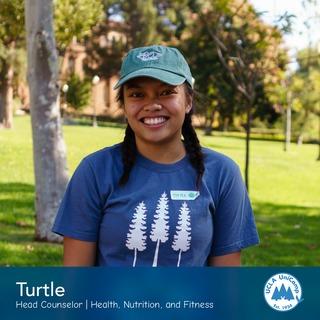 Turtle Woodsey