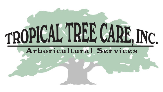 Tropical Tree Care