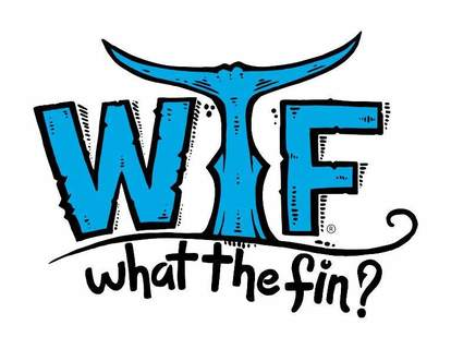 What the Fin?
