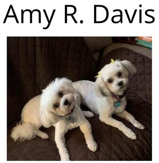 Amy R. Davis