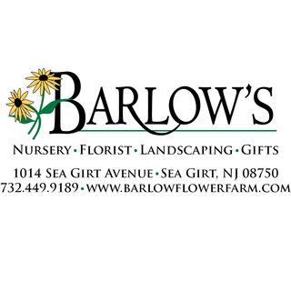 Barlow's