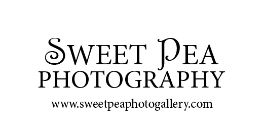 Sweet Pea Phtography