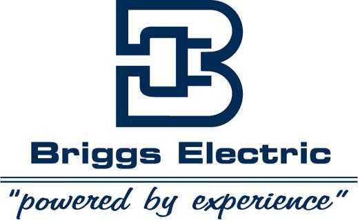 Briggs Electric