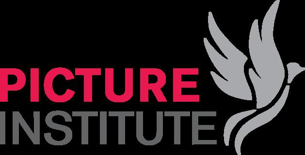 Moving Picture Institute