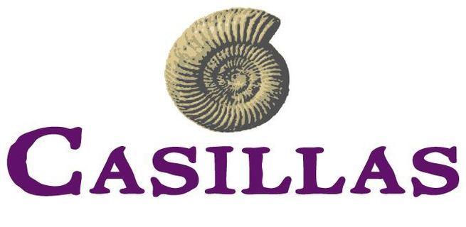 Casillas Petroleum