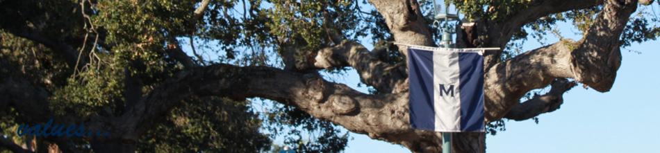 Tree banner banner