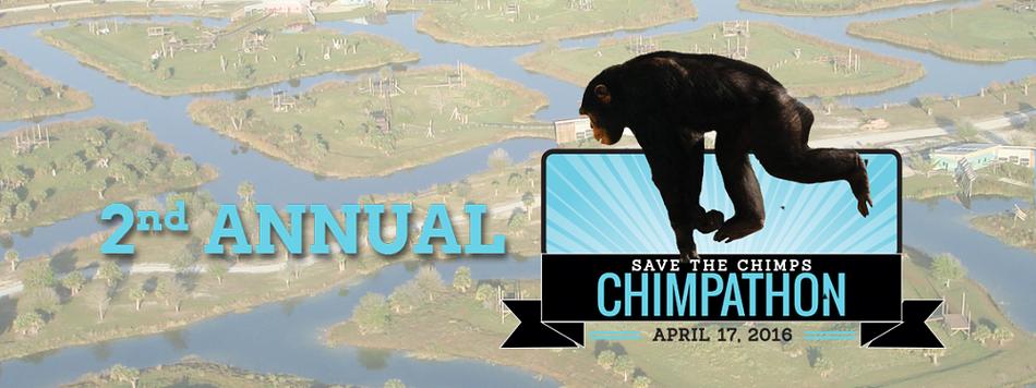 Chimpathon 2016 givezooks banner banner