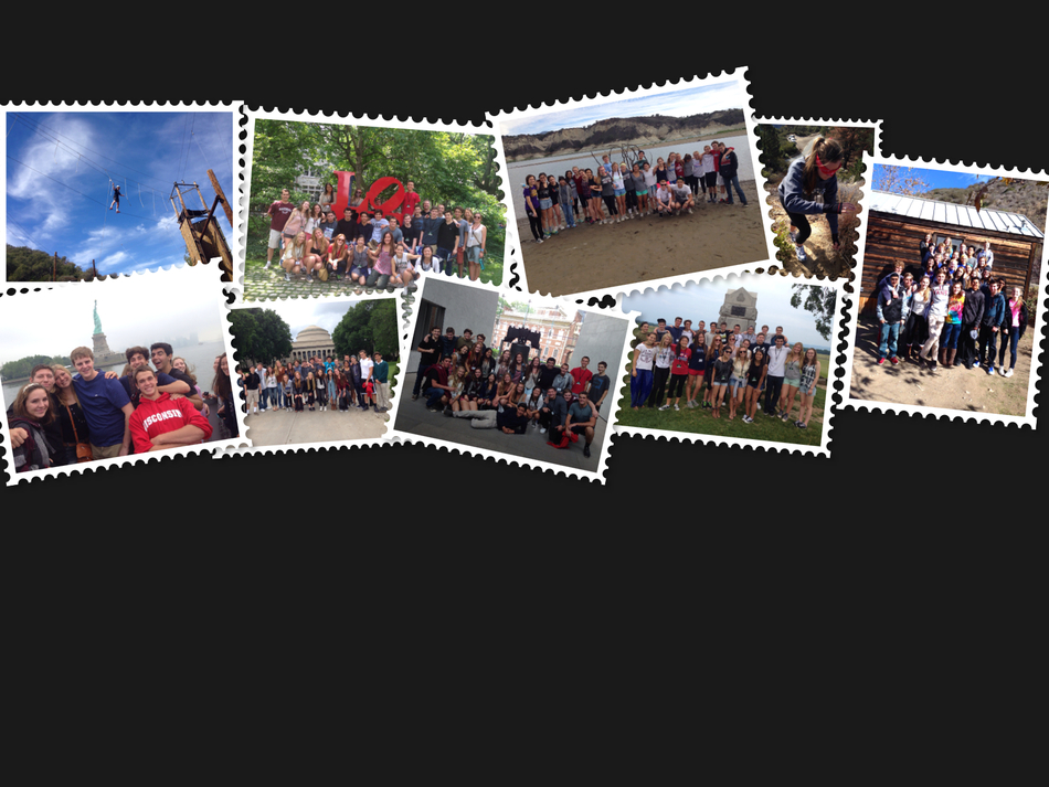 Collage  1  1 banner