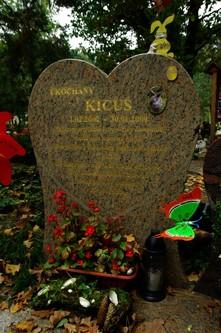 Pregowski kicus