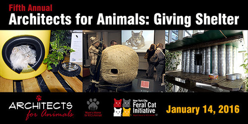 Architects for Animals: Giving Shelter