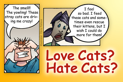 Enhancing Neighborhood Relations Surrounding Community Cats