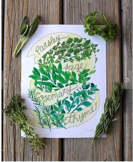 Herbs watercolor