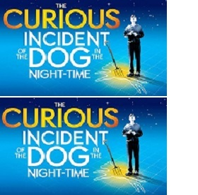 Tickets to The Curious Incident of the Dog in the Night-Time - Respite House Online Raffle