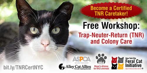 Trap-Neuter-Return (TNR) and Colony Care Workshop
