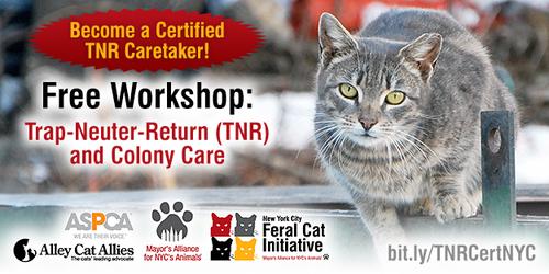 Trap-Neuter-Return (TNR) and Colony Care Workshop