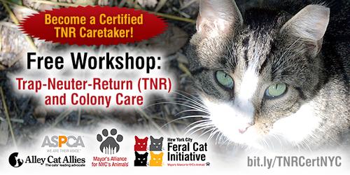Trap-Neuter-Return (TNR and Colony Care Workshop