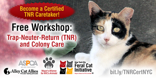 Trap-Neuter-Return (TNR and Colony Care Workshop
